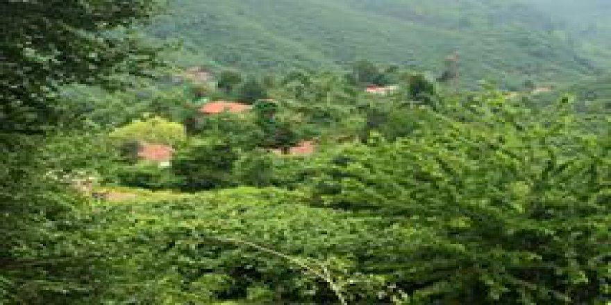Akçakoca Küpler Köyü Resimleri