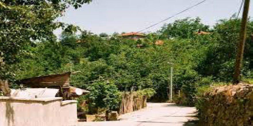 Akçakoca Nazımbey Köyü Resimleri
