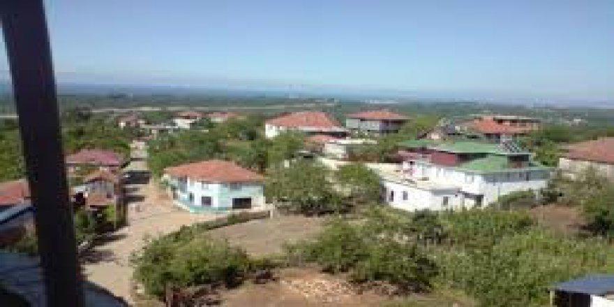 Akçakoca Ortanca Köyü Resimleri