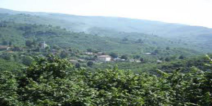 Akcakoca Tahirli Köyü Resimleri