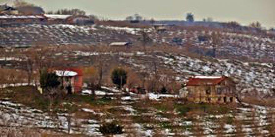Akçakoca Yeşilköy Köyü Resimleri