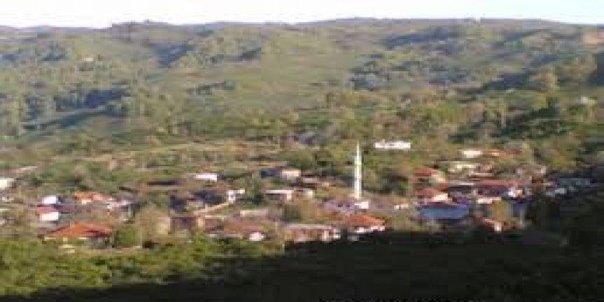 Cumayeri Çamlıpınar Köyü Resimleri