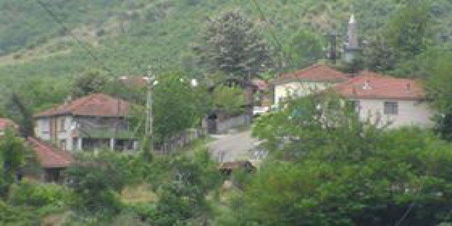 Cumayeri Taşlık Köyü Resimleri