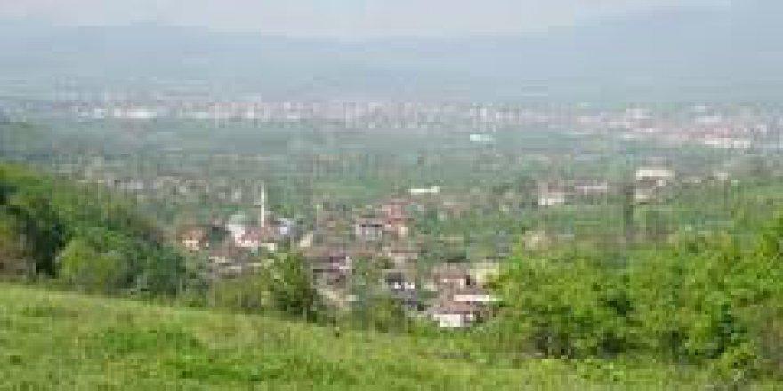 Cumayeri Yenitepe Köyü Resimleri