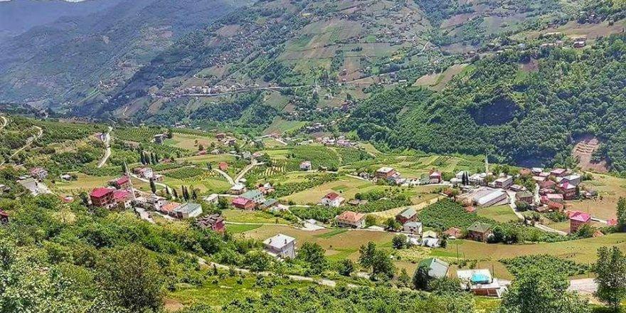 Düzköy Gökçeler Köyü Resimleri