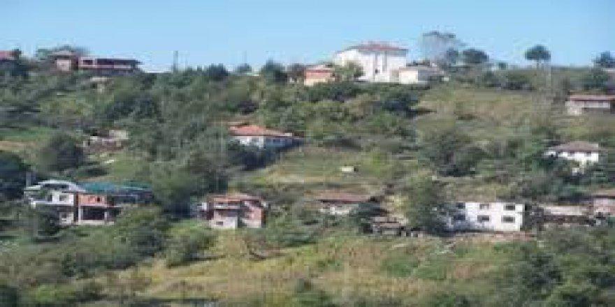 Çilimli Sarımeşe Köyü Resimleri