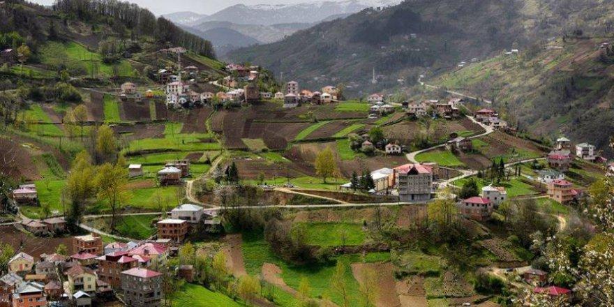 Düzköy Gürgendağ Köyü Resimleri