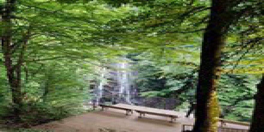 Gölyaka Güzeldere Köyü Resimleri
