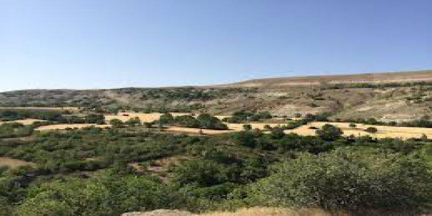 Ağın Dibekli Köyü Resimleri
