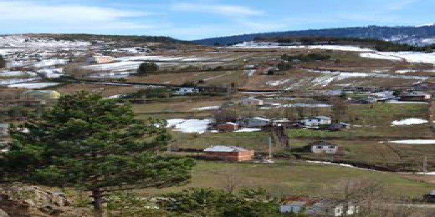 Gölyaka Saçmalıpınar Köyü Resimleri