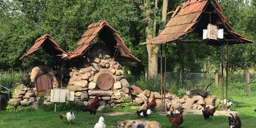 Gölyaka Yeşilova Köyü Resimleri