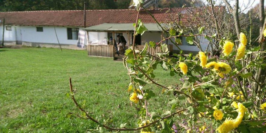 Gümüşova Yeşilyayla Köyü Resimleri
