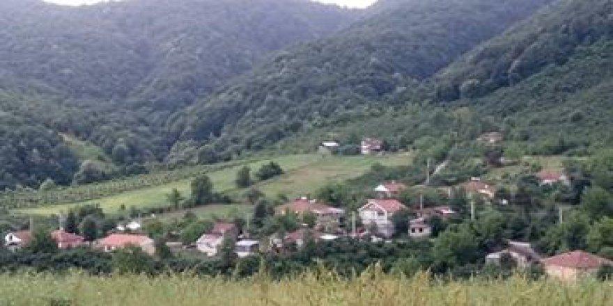 Kaynaşlı Fındıklı Köyü Resimleri