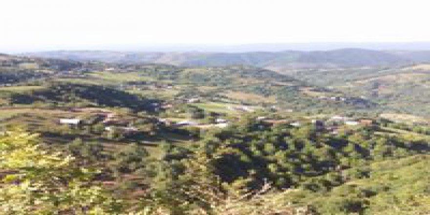 Kaynaşlı Yeniyurt Köyü Resimleri