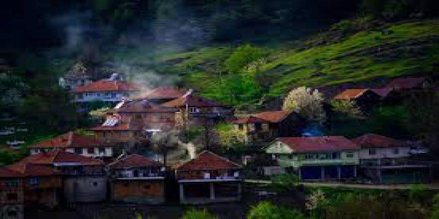 Yığılca Mengen Köyü Resimleri