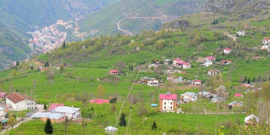 Maçka Yazlık Köyü Resimleri