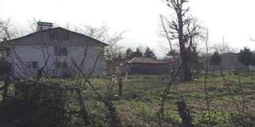 Düzce Paşaormanı Köyü Resimleri