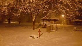 Düzce Pınarlar  Köyü Resimleri 1