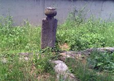 Düzce Sarayyeri Köyü Resimleri 1