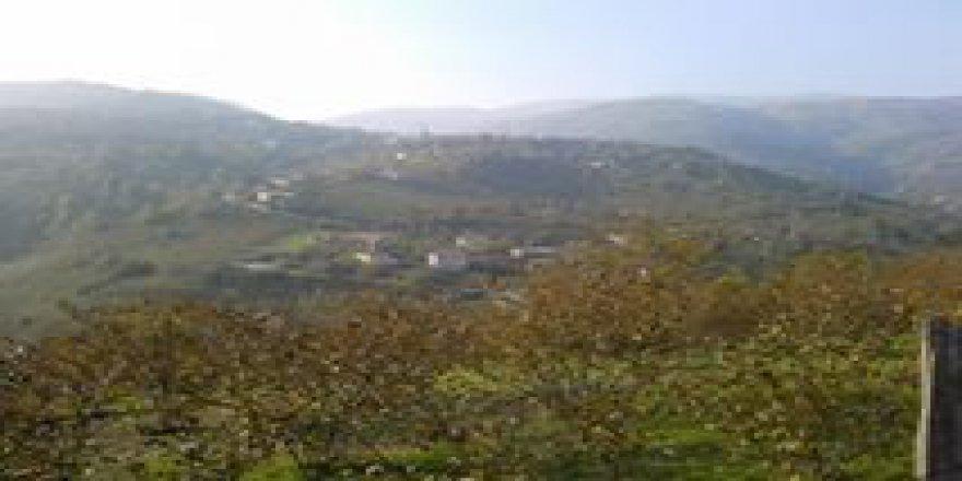 Düzce Suncuk Köyü Resimleri