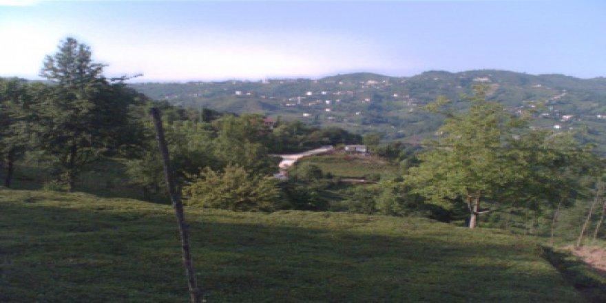 Of Çatalsöğüt Köyü Resimleri