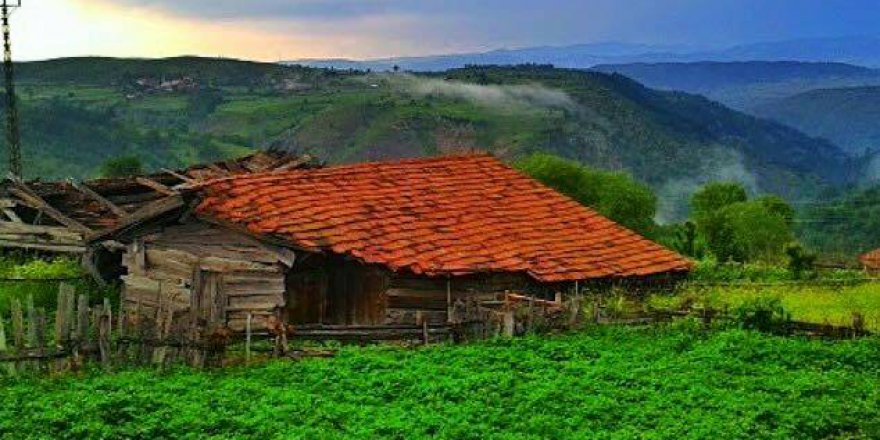 İhsangazi Kapaklı Köyü Resimleri
