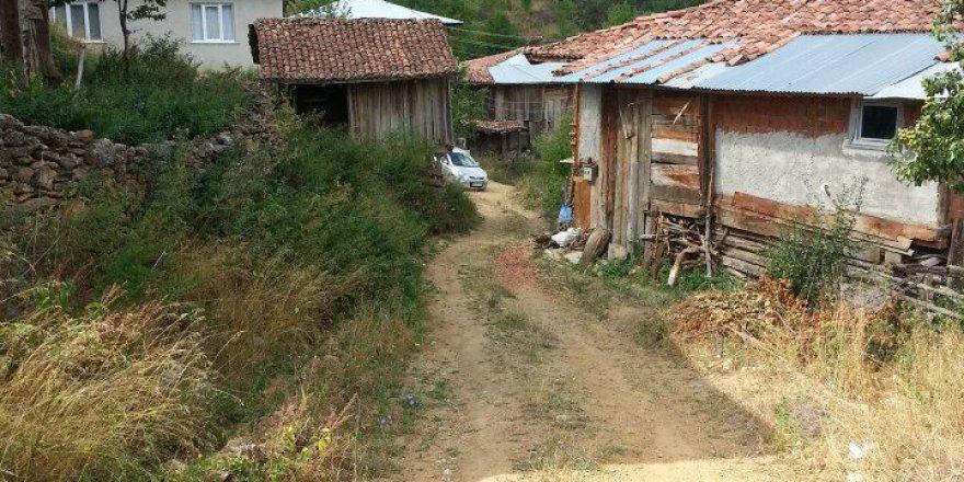 İhsangazi Kayapınar Köyü Resimleri