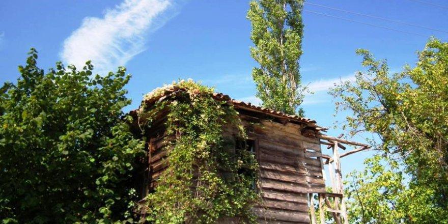 İnebolu Akçay Köyü Resimleri