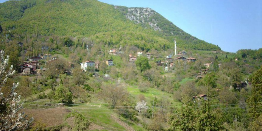 İnebolu Atabeyli Köyü Resimleri