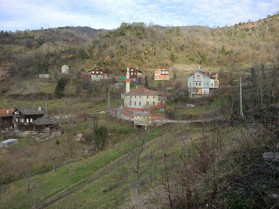 İnebolu Ayva Köyü Resimleri 1
