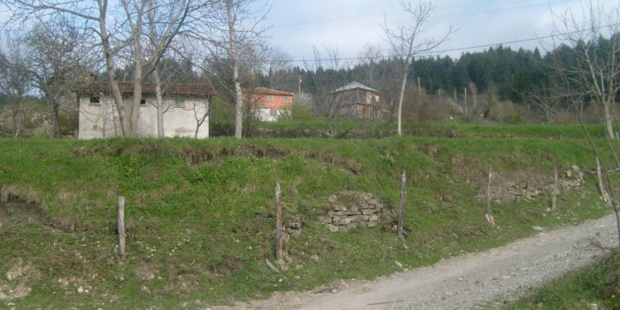 İnebolu Başköy Köyü Resimleri