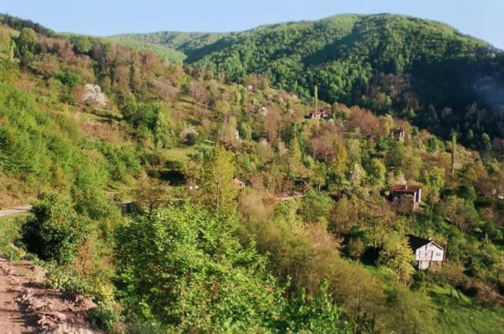İnebolu Bayıralan Köyü Resimleri 1