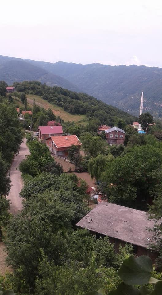 İnebolu Belence Köyü Resimleri 1
