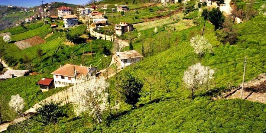 Of Güresen Köyü Resimleri