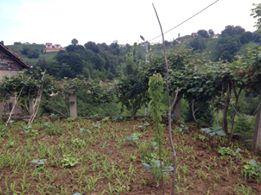 Of Doğançay Köyü Resimleri 1