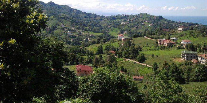Of Doğançay Köyü Resimleri