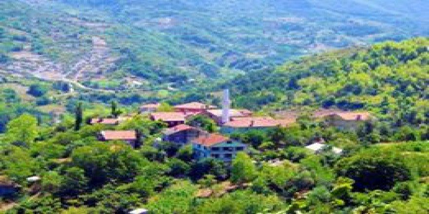 İnebolu Taşoluk Köyü Resimleri