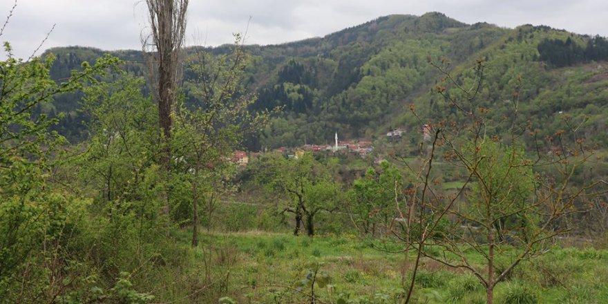 İnebolu Yeşilöz Köyü Resimleri
