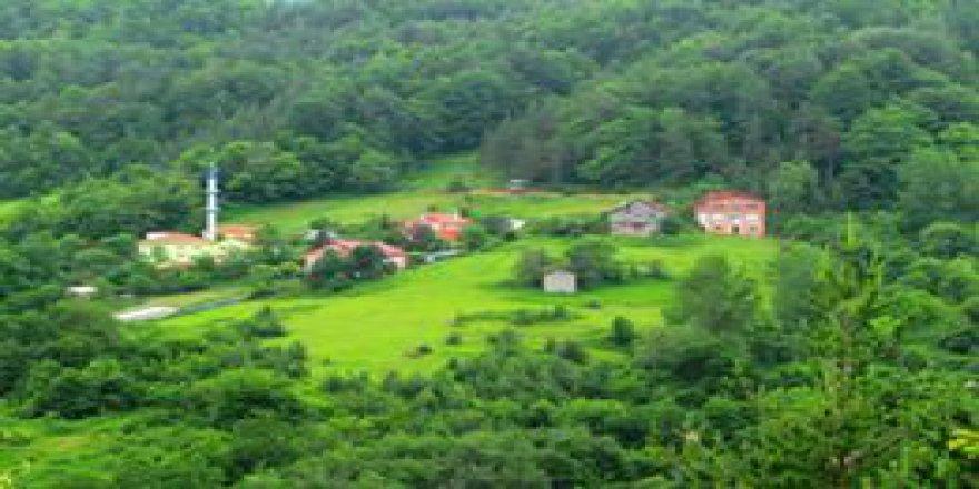 İnebolu Yolüstü Köyü Resimleri
