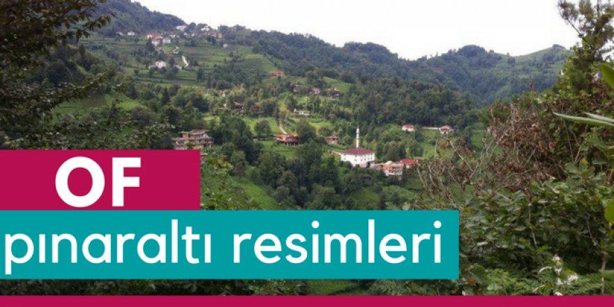 Of Pınaraltı Köyü Resimleri