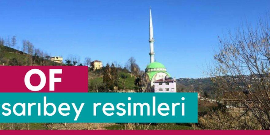 Of Sarıbey Köyü Resimleri