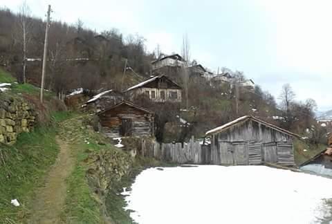 Küre Taşpınar Köyü Resimleri 1