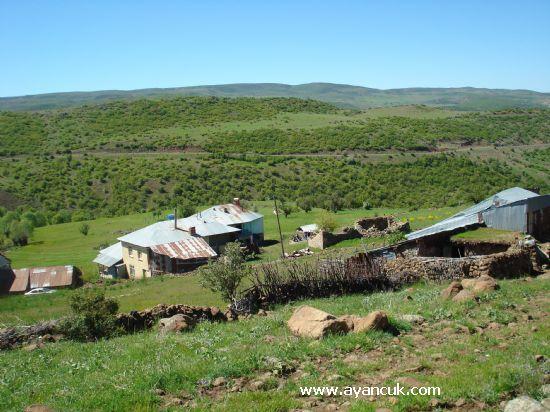 Karakoçan Çıtak Köyü Resimleri 1