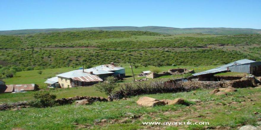Karakoçan Çıtak Köyü Resimleri