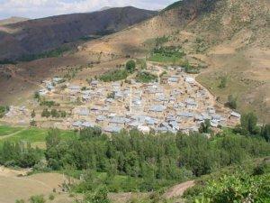 Bayburt Alapelit Köyü