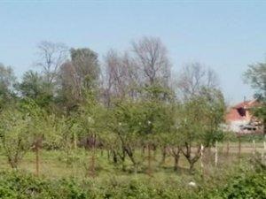 Edirne Bosna Köyü