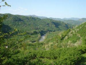 Ordu Güzelyalı Köyü