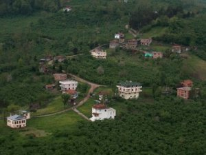 Ordu Düzköy Köyü