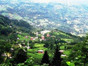 Giresun Düzköy Köyü