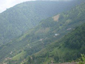 Giresun Doymuş Köyü